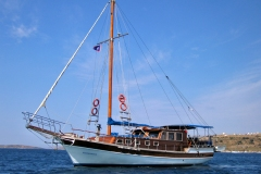 mBarbaros-gulet-for-charter-forzatre-1